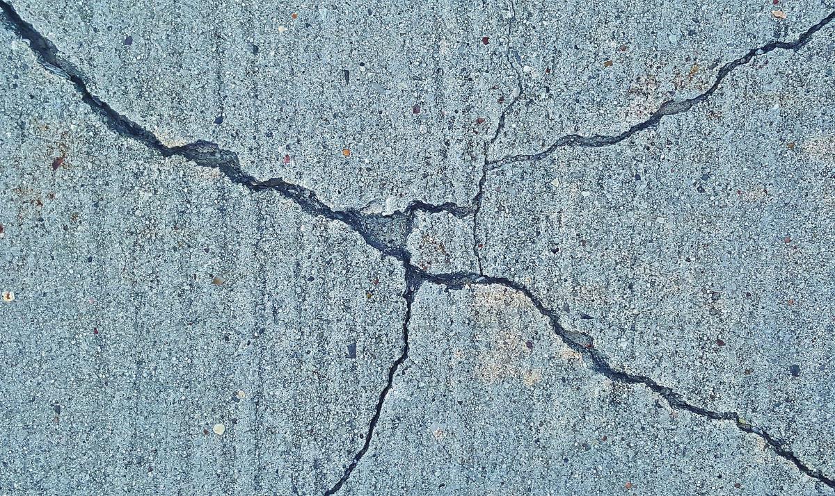 Terremoto, buonismo e insensibilità